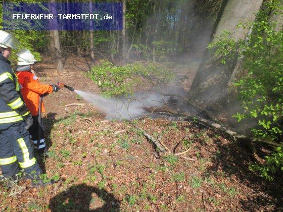 Brandeinsatz vom 26.04.2020  |  FEUERWEHR-TARMSTEDT.de (2020)