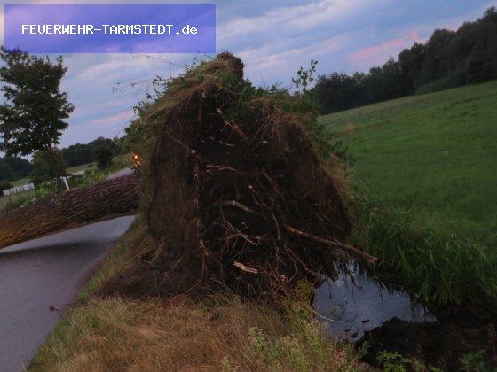 Hilfeleistungseinsatz vom 21.08.2020  |  FEUERWEHR-TARMSTEDT.de (2020)